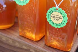 Pure Montana Wildflower Honey